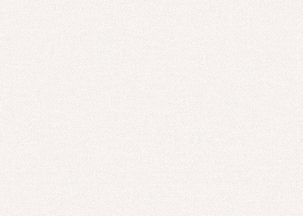 Рулонные кассетные шторы УНИ - Классик 51 белый